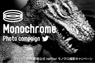 twitter連動企画!モノクロ撮影キャンペーン!イメージ